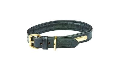 WeatherBeeta Hunde-Halsband »Leder Hundehalsband Gepolstert«, Textil, (1 St.) kaufen