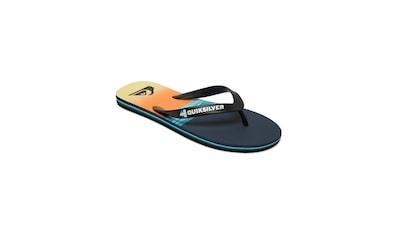 Quiksilver Sandale »Molokai Hold Down« kaufen