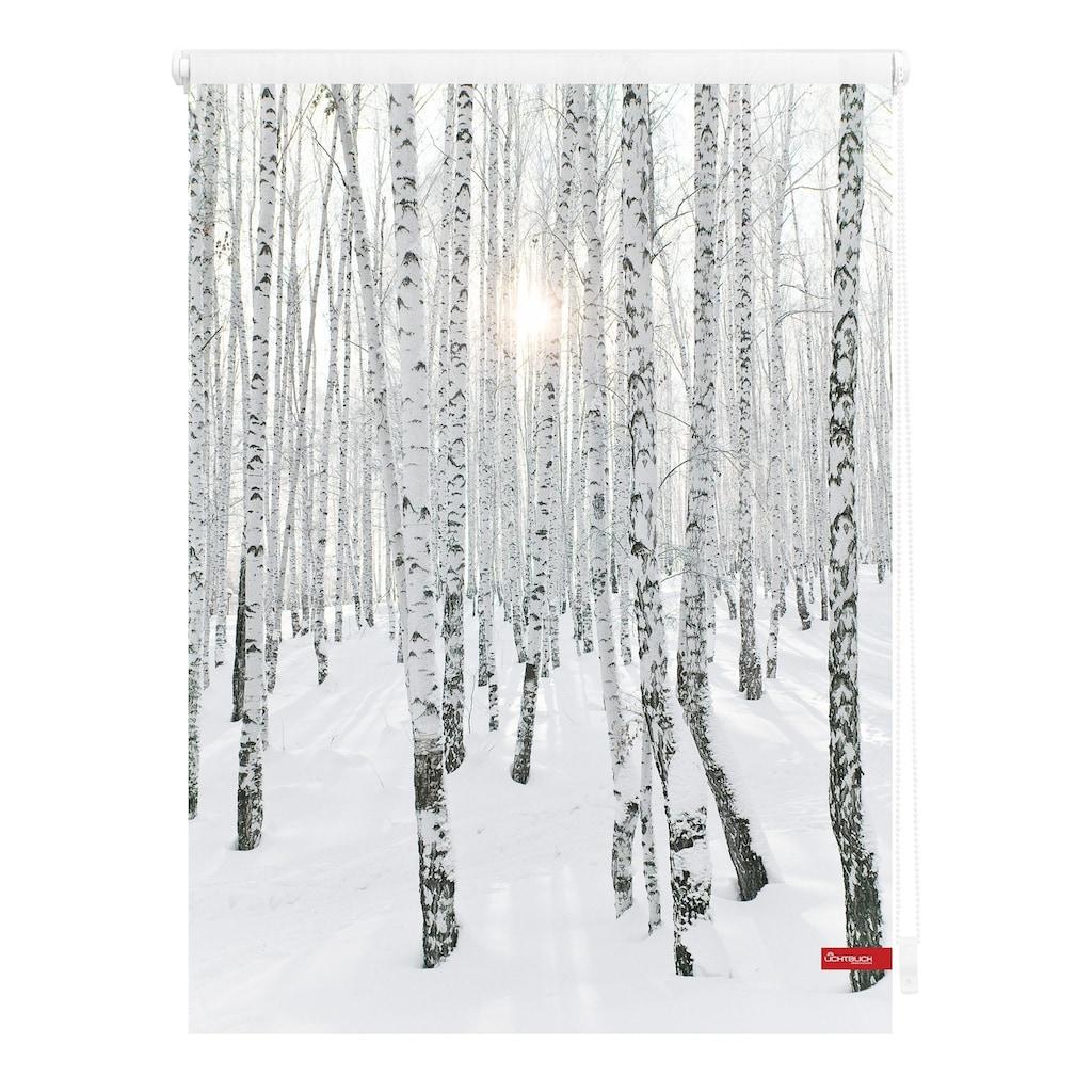 Seitenzugrollo »Klemmfix Motiv Birkenwald«, LICHTBLICK, Lichtschutz, ohne Bohren, freihängend