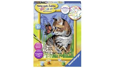 Ravensburger Malen nach Zahlen »Katze mit Schmetterling«, Made in Europe, FSC® - schützt Wald - weltweit kaufen