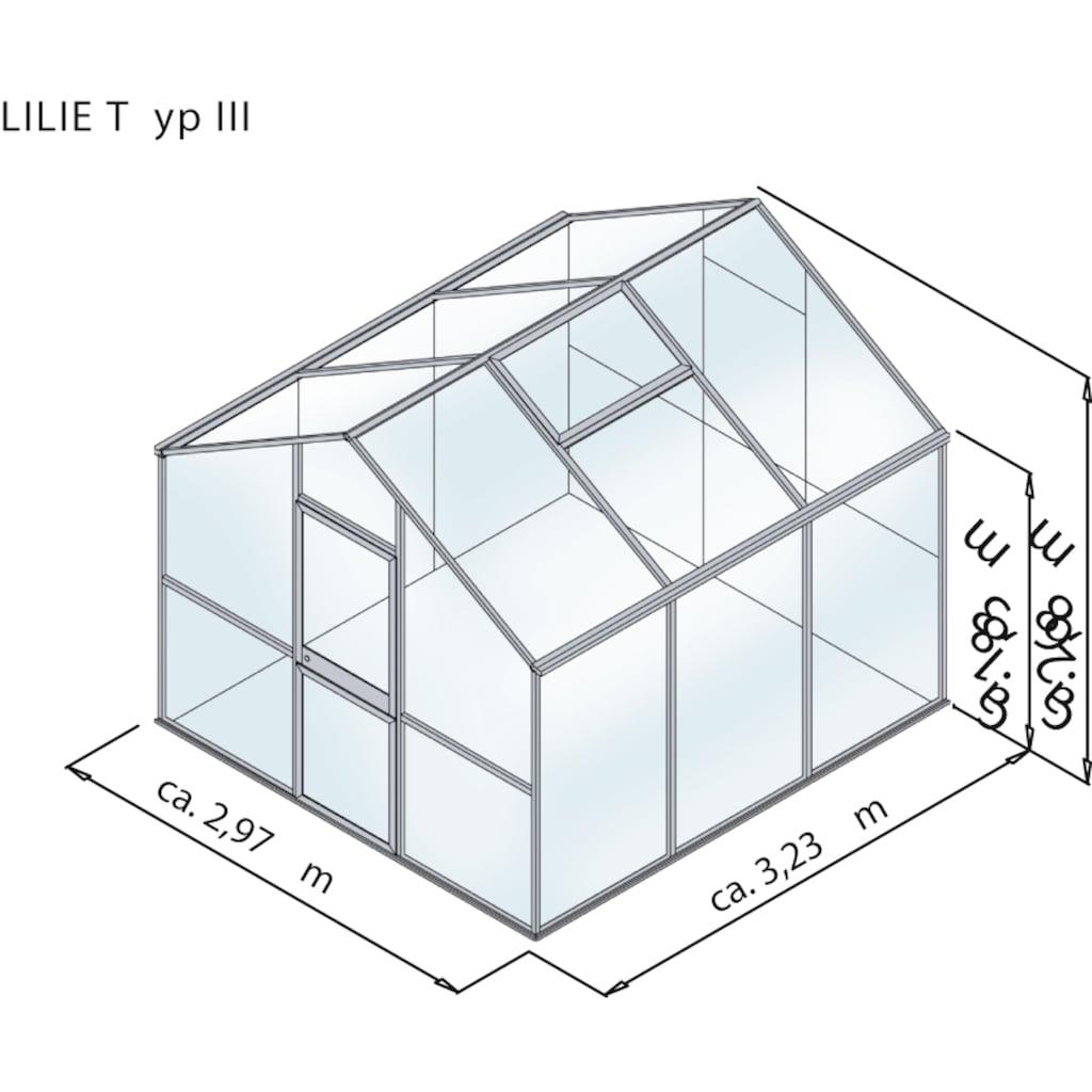 KGT Gewächshaus »Lilie III«, BxTxH: 297x323x268 cm, silber, inkl. Regenrinne