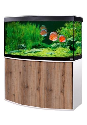 FLUVAL Aquarien-Set »Vicenza 260 mit App-Steuerung« kaufen
