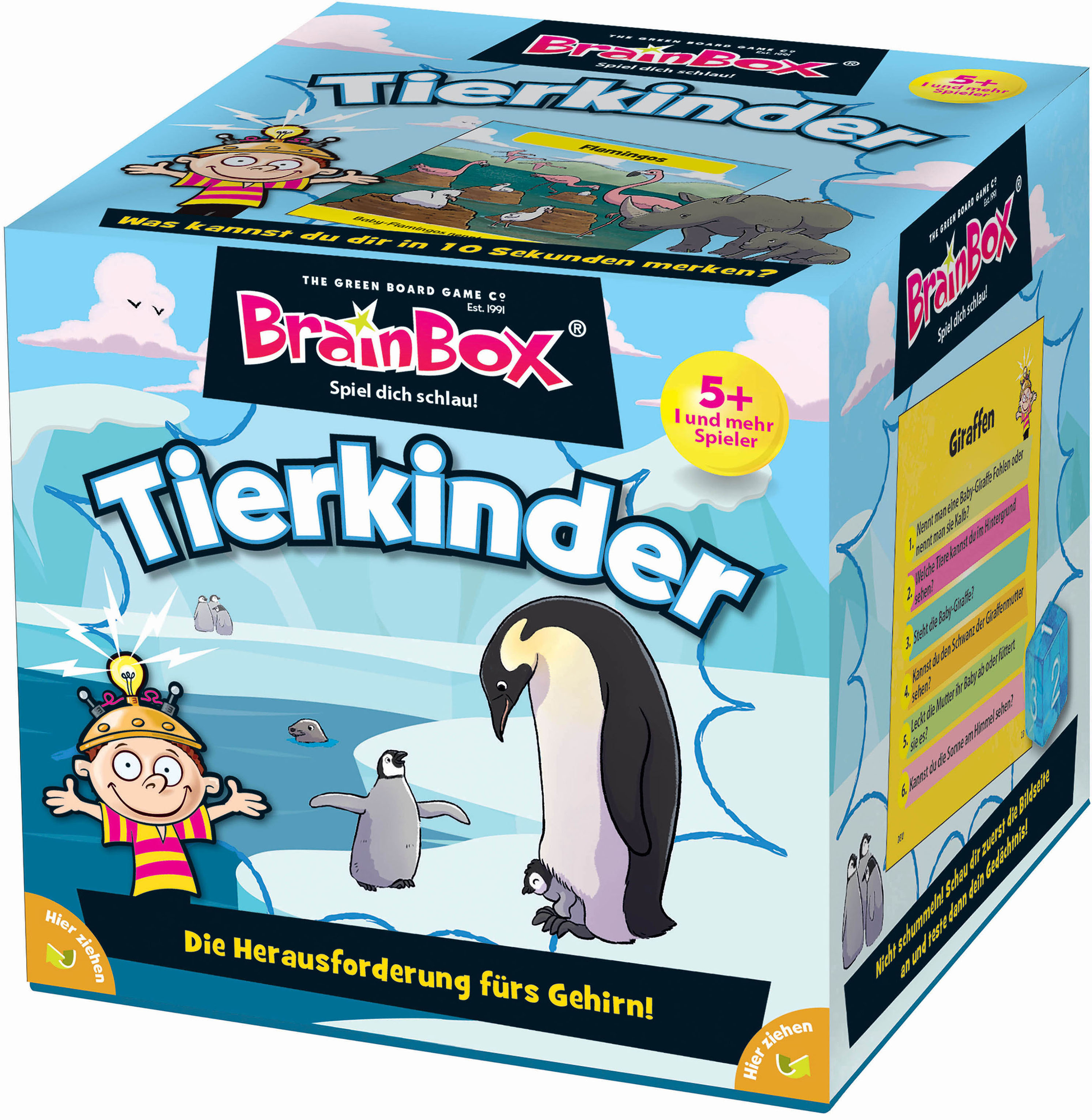 BrainBox Spiel Tierkinder bunt Kinder Lernspiele Lernspielzeug