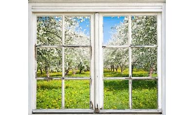 queence Wandsticker »Wiese mit Bäumen« kaufen