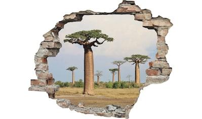 queence Wandtattoo »Affenbrotbaum« (1 Stück) kaufen