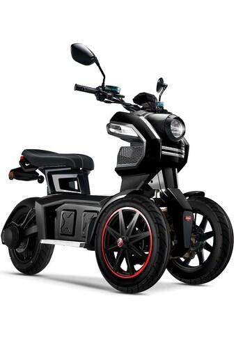 Doohan Elektromobil »eGo2«, 45 km/h kaufen