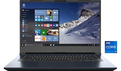 XMG Notebook »CORE 14 - L20qxq«, (500 GB SSD) kaufen