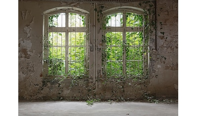 living walls Fototapete »Designwalls Old Window« kaufen