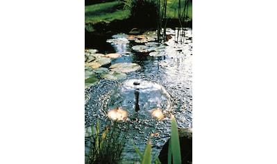 UBBINK Springbrunnenpumpe »Elimax 1500«, 1500 l/h kaufen