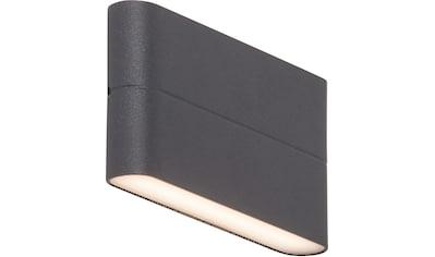 AEG Leuchten LED Außen-Wandleuchte »TELESTO«, selbstreinigend kaufen