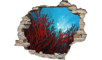 queence Wandtattoo »Korallen« (1 Stück) kaufen
