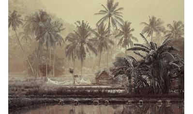 Papermoon Fototapete »Sepia Tropenwald«, Vliestapete, hochwertiger Digitaldruck kaufen