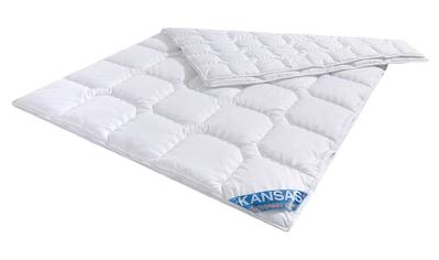 f.a.n. Schlafkomfort Microfaserbettdecke »Kansas«, 4-Jahreszeiten, (1 St.), Echter... kaufen