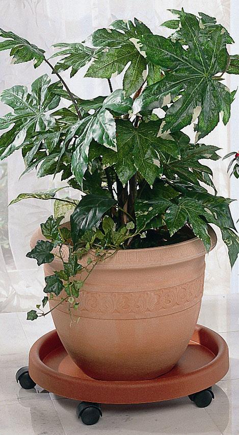 Ruco Blumentopfuntersetzer, (Set, 2 tlg.), Kunststoff, Ø 34 cm orange Blumentopfuntersetzer Zubehör Pflanzen Garten Balkon
