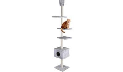 Silvio Design Kratzbaum - Deckenspanner »Kratzturm« kaufen