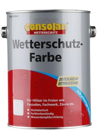 CONSOLAN Wetterschutzfarbe »Profi Holzschutz«, silbergrau, 2,5 Liter kaufen