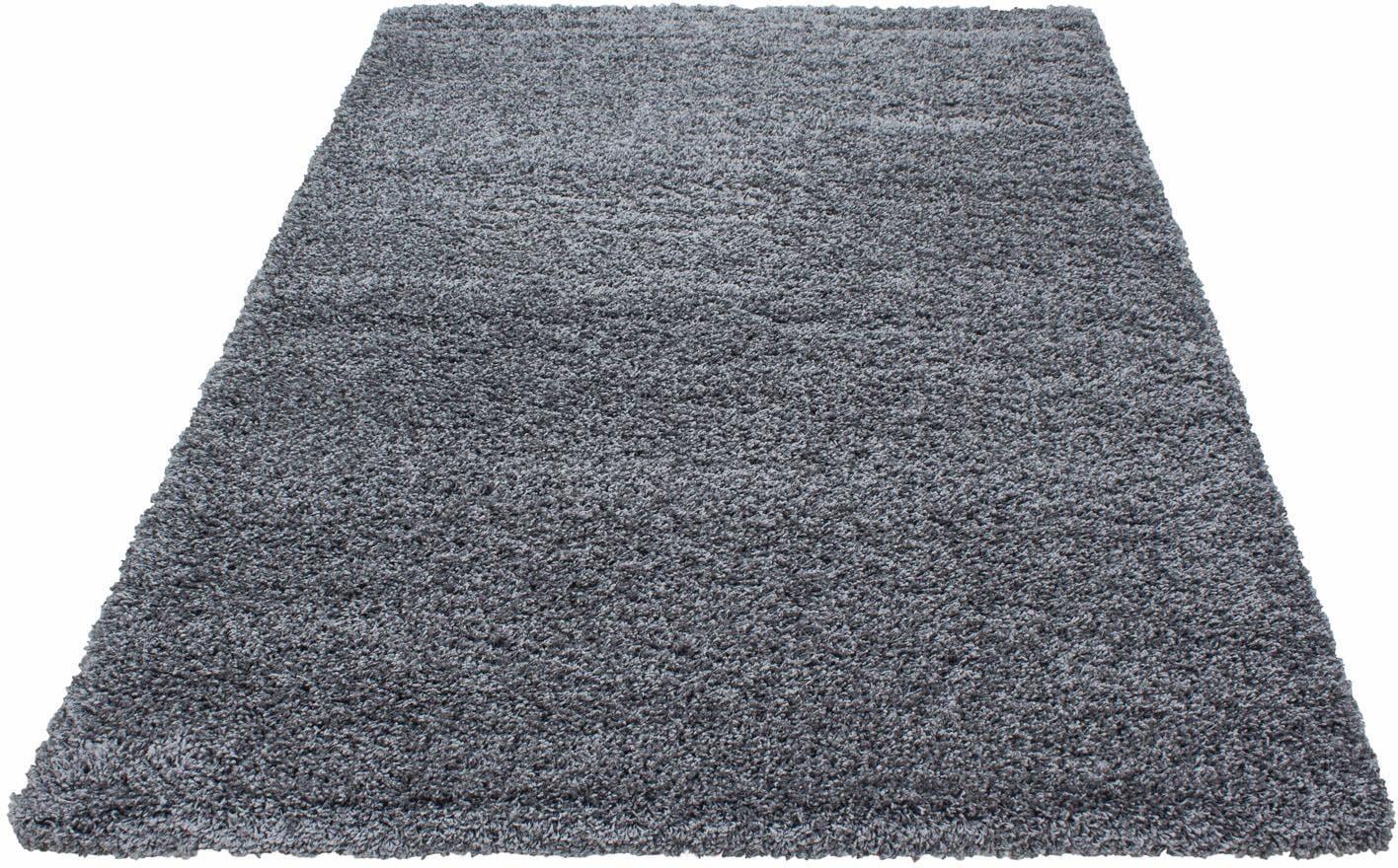 Hochflor-Teppich Dream Shaggy Ayyildiz rechteckig Höhe 50 mm maschinell gewebt
