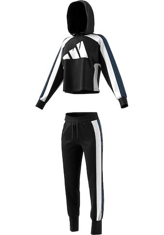 adidas Performance Trainingsanzug »W TS BIG LOGO« (Set, 2 tlg.) kaufen
