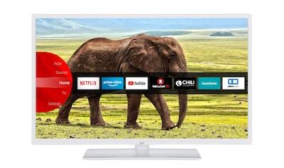"JVC LED-Fernseher »LT-32VH5955W«, 80 cm/32 "", HD-ready, Smart-TV kaufen"