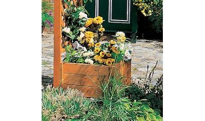 promadino Pflanzkübel, (Set, 2 St.), BxTxH: 52x52x32 cm kaufen