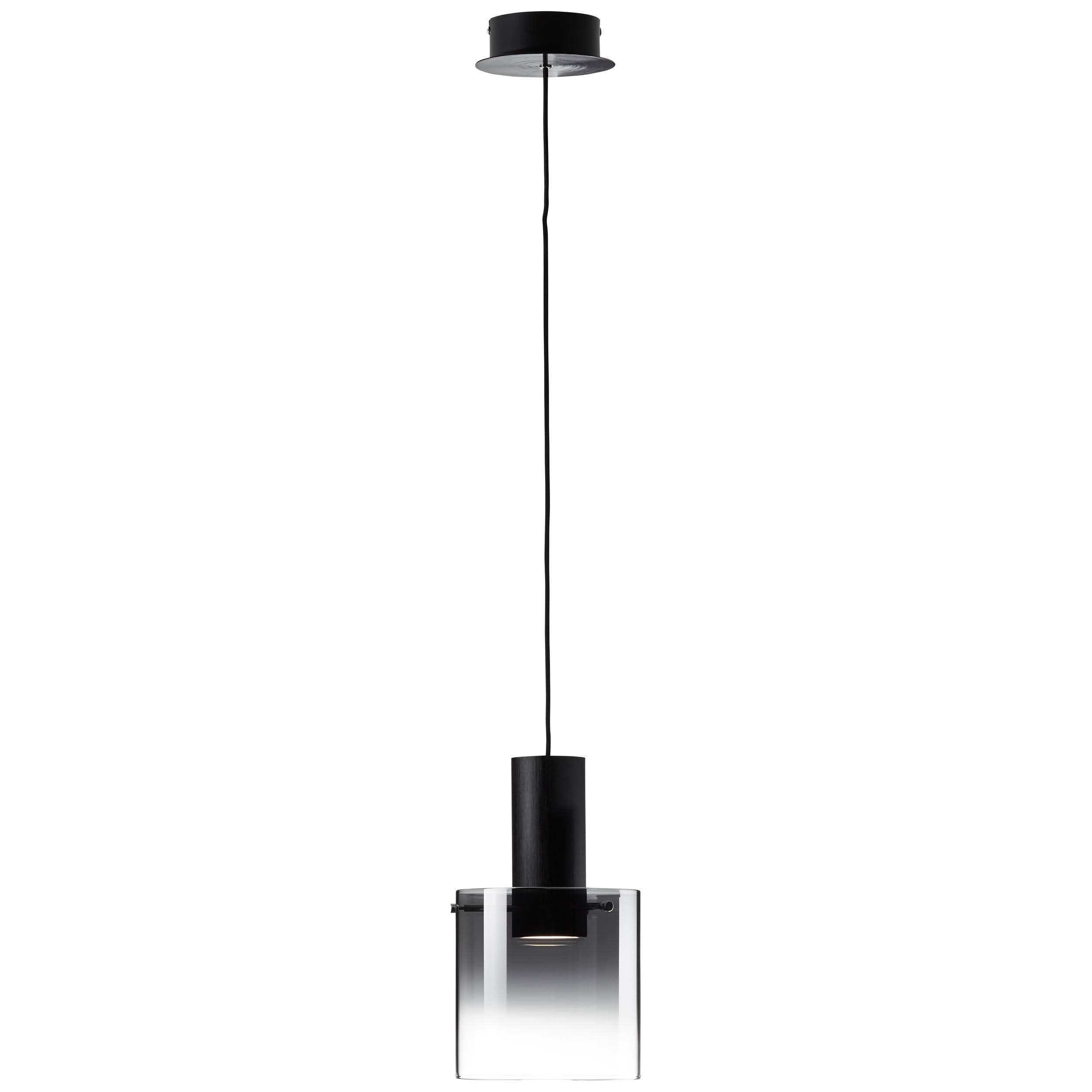 Brilliant Leuchten Beth LED Pendelleuchte 1flg schwarz/rauchglas