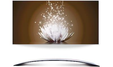 Artland Wandbild »Magie der Lotus-Blume«, Blumen, (1 St.), 3D Optik gebogen kaufen