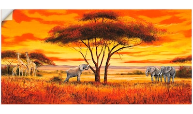 Artland Wandbild »Afrikanische Landschaft II«, Afrika, (1 St.), in vielen Größen &... kaufen