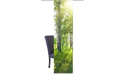 HOME WOHNIDEEN Schiebegardine »NEWCASTLE«, HxB: 245x60, inkl. Befestigungszubehör kaufen