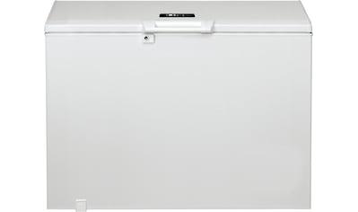 BAUKNECHT Gefriertruhe, 118 cm breit kaufen