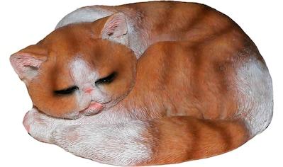 Casa Collection by Jänig Tierfigur, Katze braun-weiß, schläft kaufen