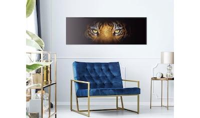 Reinders! Holzbild »Deco Block 40x118 Eye of the Tiger« kaufen