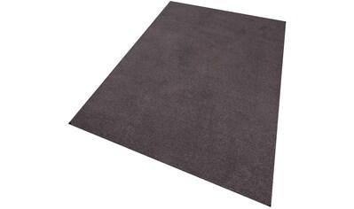 Teppich, »Buffalo«, Living Line, rechteckig, Höhe 15 mm, maschinell getuftet kaufen