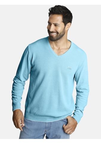 Jan Vanderstorm V - Ausschnitt - Pullover »LINDOMAR« kaufen