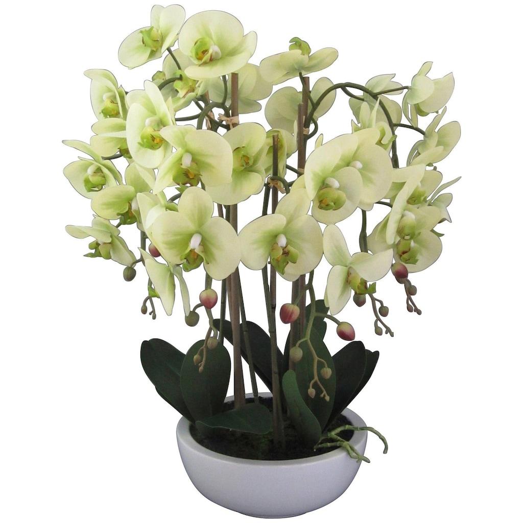 Creativ green Kunstpflanze »Orchidee Phalaenopsis«, in Keramikschale