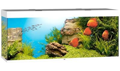 JUWEL AQUARIEN Aquarium »Rio 450 LED«, 450 Liter, BxTxH: 151x51x66 cm, in versch. Farben kaufen