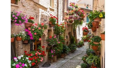 Papermoon Fototapete »Flower Alley in Spello« kaufen