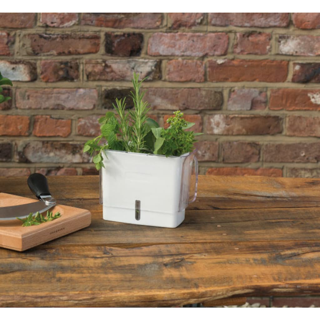 Cole & Mason Kräutertopf, Kunststoff, mit Bewässerungssystem