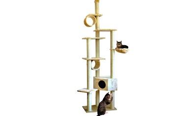 SILVIO DESIGN Kratzbaum - Deckenspanner »Cherry«, BxH: 80x230 - 260 cm kaufen