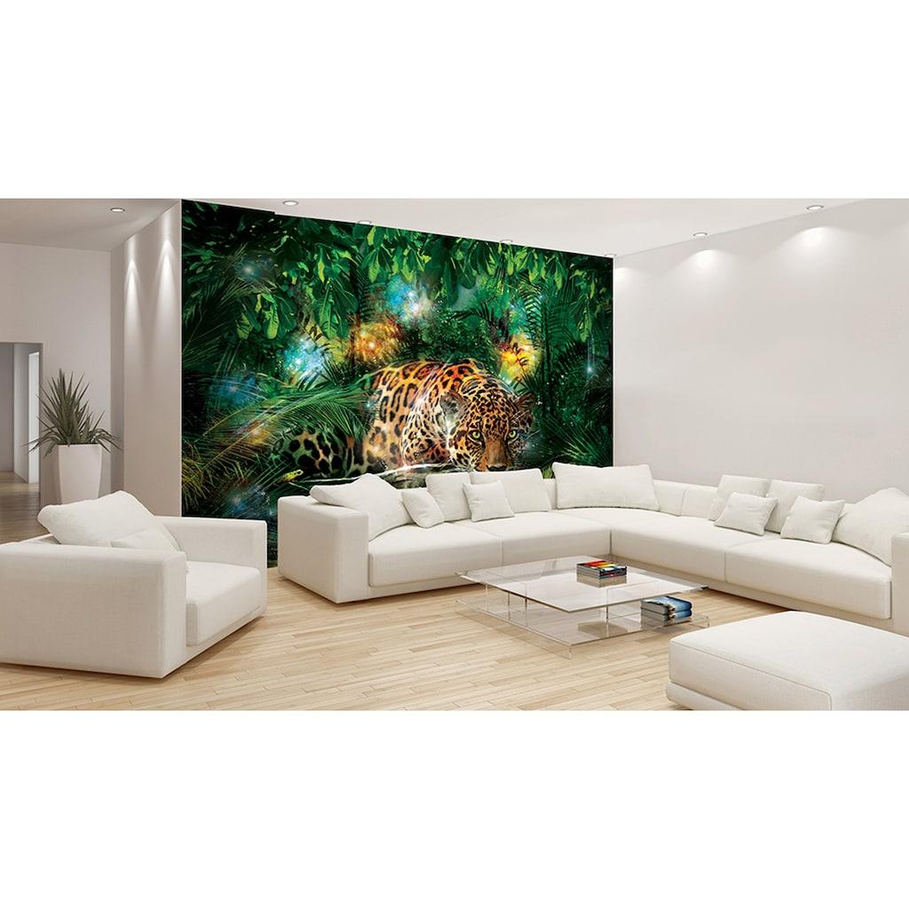 Consalnet Fototapete »Jaguar im Dschungel«, Motiv