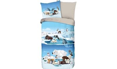 Kinderbettwäsche »Ice«, good morning kaufen