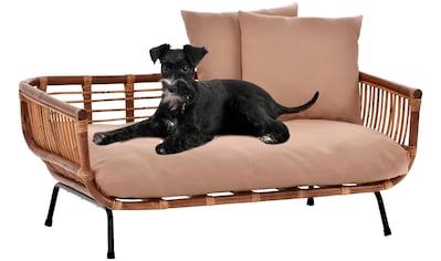 SILVIO DESIGN Hundesofa »Fay«, BxLxH: 90x57x45 cm kaufen