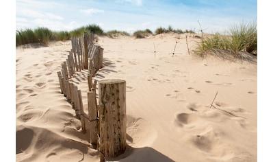 Papermoon Fototapete »Dunes Sandy Beach« kaufen