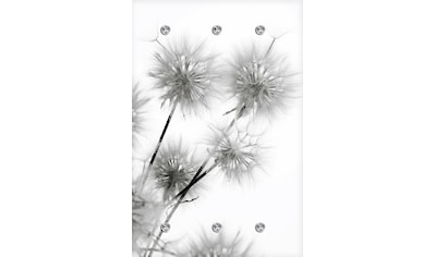 queence Garderobe »Pusteblume« kaufen