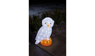 KONSTSMIDE LED-Dekofigur, LED Acryl Eule, groß, 56 kalt weiße Dioden kaufen