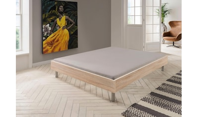 Wimex Bett »Easy« kaufen