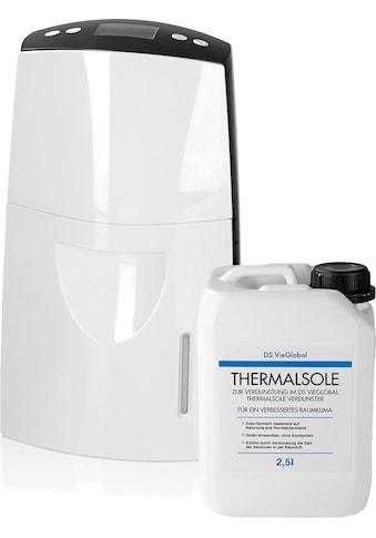 DS VieGlobal Luftbefeuchter Thermalsole - Verdunster 2,5W weiß/grau kaufen