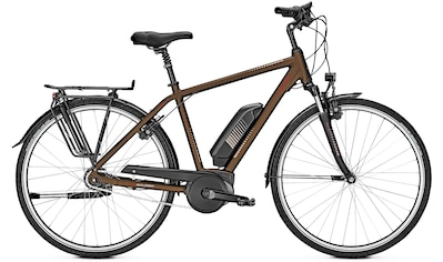 Raleigh E - Bike »Jersey 8«, 8 Gang Shimano Nexus Schaltwerk, Kettenschaltung, Mittelmotor 250 W kaufen
