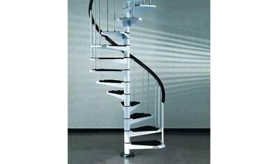 STARWOOD Spindeltreppe »AF26«, B: 100 cm, 11 Stufen, weiß kaufen