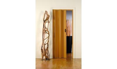 Kunststoff - Falttür »Monica«, BxH: 83x204 cm, Eichefarben - Pastell ohne Fenster kaufen