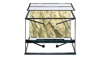 Exo Terra Terrarium »PT2610« kaufen